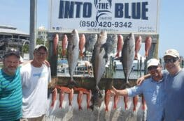 Into The Blue Summer Fishing Charters Featured Image