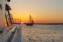 Book A Sunset Dinner Cruise With Into The Blue Featured Image