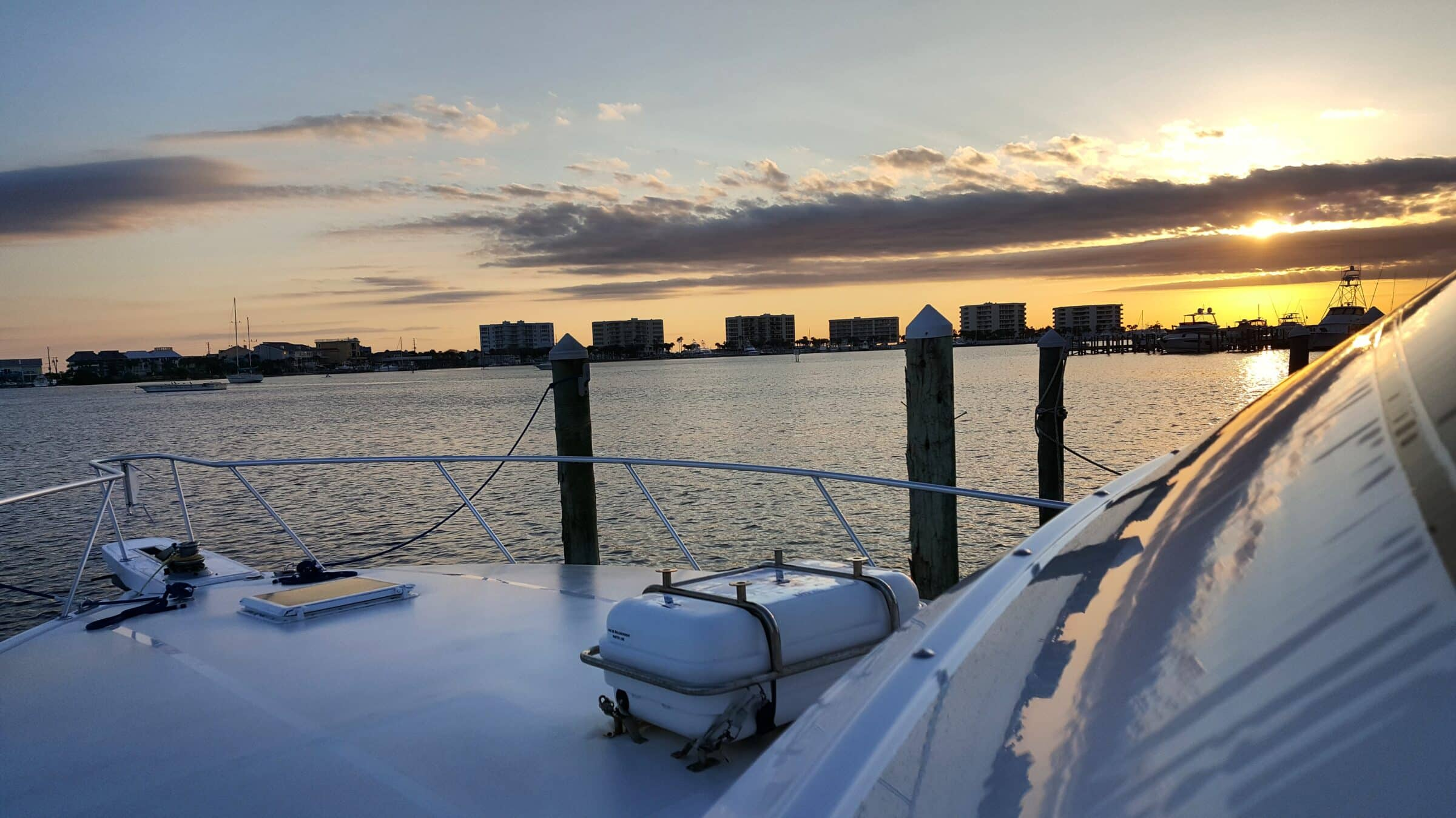 Cobia Fishing Charters With Into The Blue Featured Image