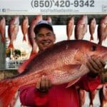Red Snapper - 01