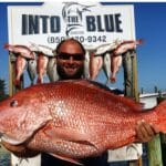 Red Snapper - 05