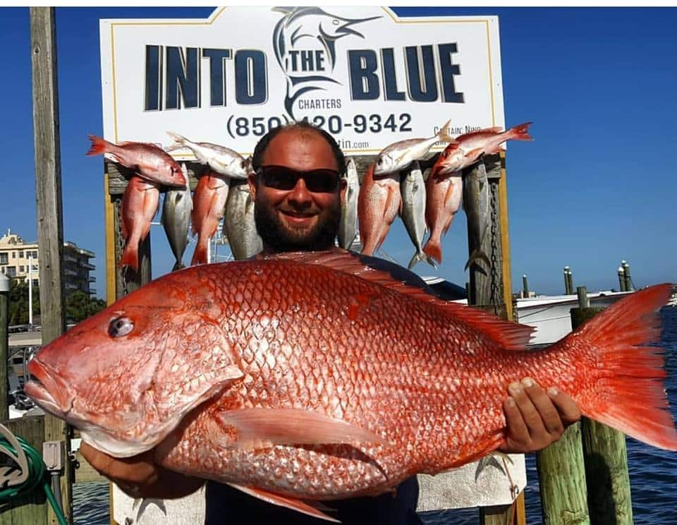 Into The Blue Red Snapper Fishing Charters - 2018 - Red Snapper - 05