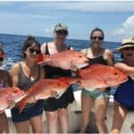 Red Snapper - 06
