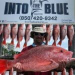 Red Snapper - 07