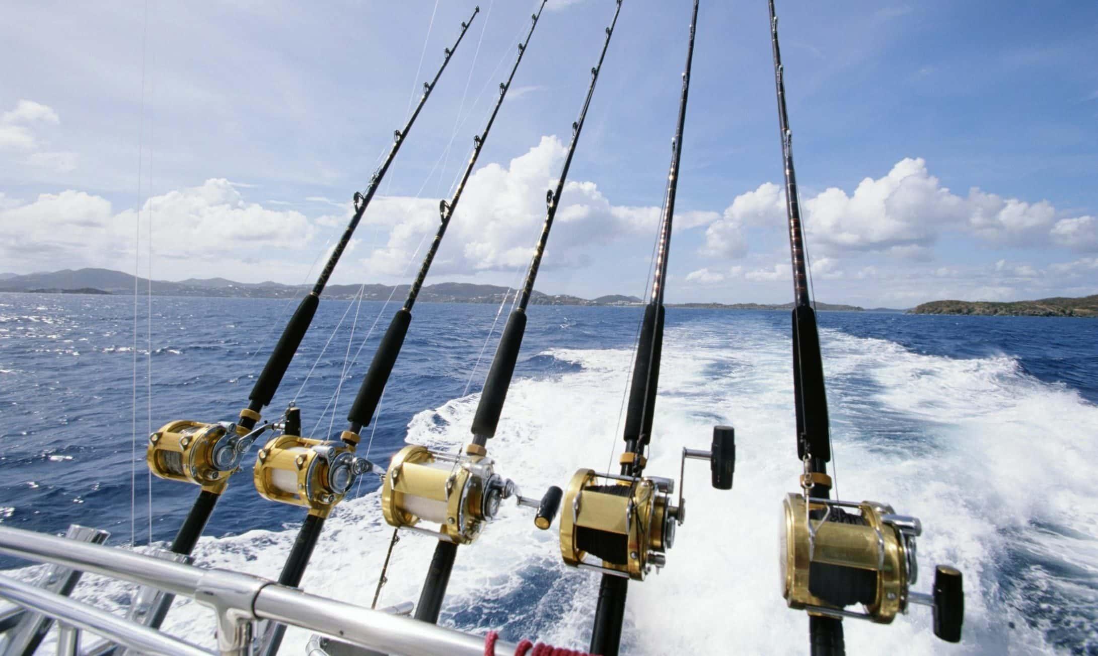 Deep Sea Fishing In Destin