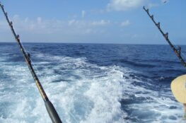 Spring Break Fishing Charters - Book Now